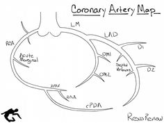 Defining the coronary artery anatomy is a critical step in any evaluation of ischemic heart disease and developing a treatment plan for your patient. The location of atherosclerotic lesions can be suggested by provocative stress testing (exercise or phar Cardiac Nursing, Nursing Mnemonics, Cath Lab Nurse, Cardiovascular Nursing, Arteries Anatomy, Cardiac Sonography, Interventional Cardiology, Ischemic Heart Disease, Nuclear Medicine