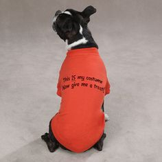 This is My Costume... Halloween Dog T-Shirt