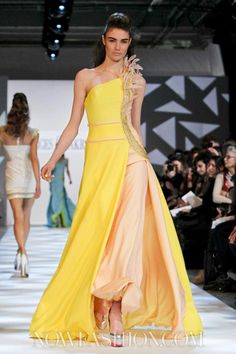 Georges Chakra Couture Spring Summer 2013 Paris