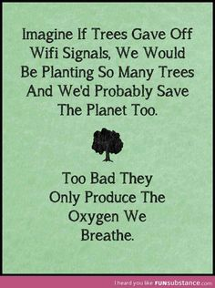 If trees gave off wi-fi