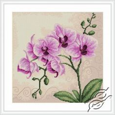 CROSS STITCH KITS - LUCA-S - Flowers - Orchid - Gvello Stitch
