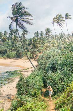 Talalla beach, Sri Lanka. Tropical paradise travel