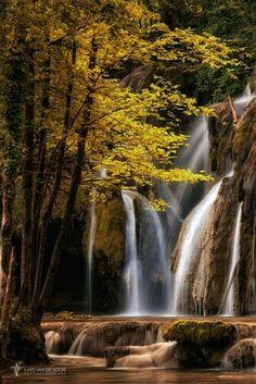 So beautiful!  I love fall !