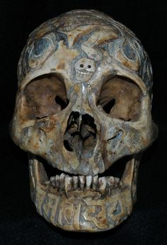 Designs carved into human skulls by the Tebetin people. This rocks! Skull Decor, Skull Art, Goth Club, Cane Handles, Rabe, Gothic Rock, Human Skull, Skull And Bones, Memento Mori