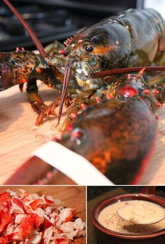 Creamy Lobster Bisque  Serves 6    Ingredients:    3 1 1/2 pound Maine lobsters  1 stick salted butter  1/2 cup all-purpose flour  6 cups whole milk  3/4 cup half and half  8-10 dashes Tabasco sauce  2 tablespoons Worcestershire sauce  6 teaspoons Dijon mustard  1 1/2 cup shredded Parmesan cheese  1/2 cup white wine  Salt and pepper, to taste