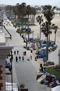280 Marine Debris California Ideas In 2021 Marine Debris Marine California