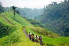 cycling around ubud