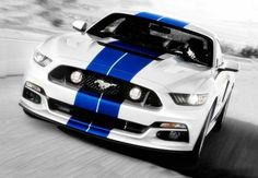New Ford Mustang Unveiling on - Average Car Guy Ford Mustang Shelby Gt500, Shelby Gt350r, 2017 Ford Mustang, Mustang Cars, Ford Mustangs, Blue Mustang, Mustang Jacket, Cobra For Sale, Ford 2015