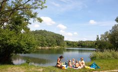Aus Rücksicht auf die Tier- und Pflanzenwelt im Nationalpark Donau-Auen sind in…