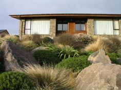 south island garden design new zealand - Google Search