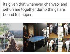 EXO Chanyeol Sehun