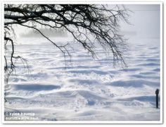 """Our Little Acre: """"The Winter That Was, Is, and Is To Come"""""""