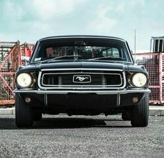Vintage Mustang, Firebird, Mustangs, Ford Mustang, Muscle Cars, Vintage Cars, Racing, Autos, Running