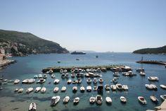 Vilkas Vanha satama. Old Port of #Dubrovnik.