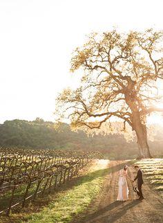 Intimate California vineyard wedding | photo by The Why We Love | 100 Layer Cake- FERN!!!