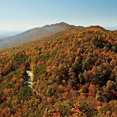 Fall Color on the Great Smoky Mountains | SouthernLiving.com