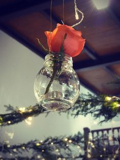 rosita by social paraiso, via Flickr