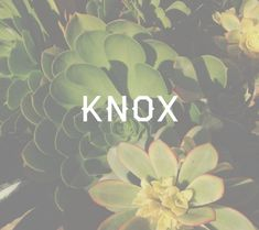 """Knox is a name of Scottish origin and means """"round hill"""". I think it's a great alternative to those who like short, strong names for boys.                                                                                                                                                                                 More"""