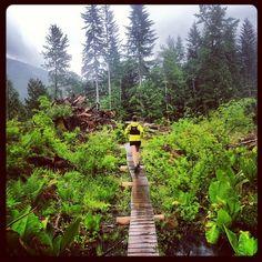 Squamish trail running via Arc'athlete Adam Campbell