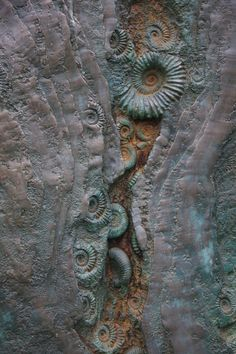 Seppe Slabbinck likes fossils. Look what a piece of art! ammonite fossils as art!