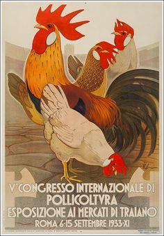roma, V congresso internazionale di pollicoltura, esposizione ai mercati di traiano