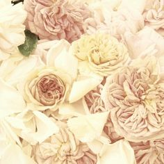 pastel flowers for a spring wedding