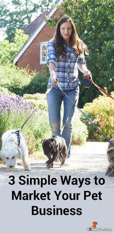 Are you a pet professional of any kind, be it a kennel owner, groomer, pet sitter or dog walker? Marketing your pet business can seem like a daunting venture, especially if you have no experience. So, here are tips and tricks to get you on your way to promoting your pet business from Veronica Postolski of ProPet Software Inc. @propetware Dog Grooming Tips, Dog Grooming Business, Pet Sitting Business, Surf, Pet Sitting Services, Pet Services, Dog Food Online, Pet Boarding, Bulldog Puppies For Sale