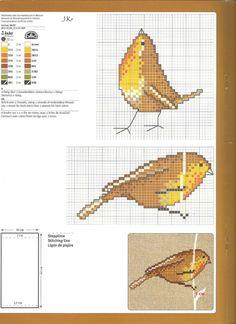 kuşlu1