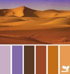 Desert colors                                                       …