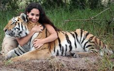 Female tiger wrangler Or Lazmi cuddles 33-stone male Siberian tiger Shosho, at Seaview Lion Park, South Africa.  Or, 25,  originally from Israel, now manages the park. She has raised Shosho and another tiger since park staff took them from their mother at nine days old.