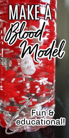 Kids will love learning about the components of blood with this fun and memorable activity - make a blood model! Science Activities For Kids, Cool Science Experiments, Science Resources, Teaching Science, Stem Activities, Science Projects, Montessori Science, Preschool, Montessori Homeschool