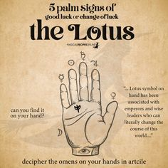 Ancient Greek Religion, Sudden Change, The Omen, Beacon Of Light, Star Show, Palmistry, Love Signs, Good Luck, Initials