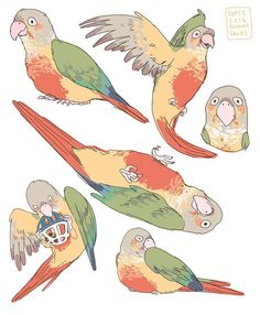 Hamotzi Cute Animal Drawings, Animal Sketches, Bird Drawings, Cute Drawings, Character Art, Character Design, Animal Doodles, Dibujos Cute, Cute Birds