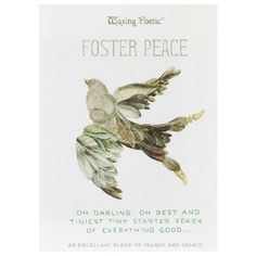 Waxing Poetic Charm & Cord Set Perennial Foster Peace