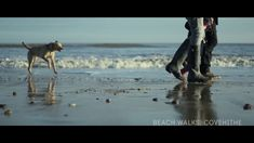 Winter on the Suffolk Coast. This inspirational film will give you a taste of what's on offer in Suffolk, whatever the weather and give you the chance to plan a trip to our wonderful county in Suffolk Coast, Hungarian Vizsla, She Was Beautiful, Walk On, Wonderful Places, Places To Go, Pony, Coastal, Horses