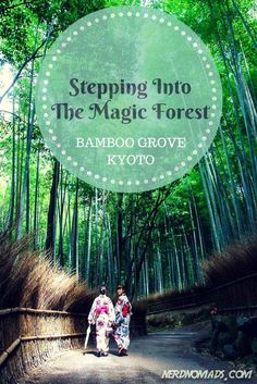 Japan's Sagano Bamboo Forest, in Arashiyama area on the outskirts of Kyoto city.