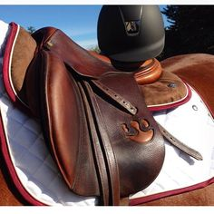 Ogilvy Equestrian Approved!  Ogilvy Equestrian, halfpad, saddle pad, horse show, horse, show jumping, riding, fashion, tack  www.ogilvyequestrian.com