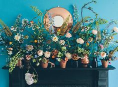 Lente tuin in huis - New Stories