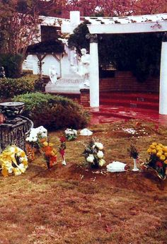 1977- This is Elvis final Resting place at Graceland where he 1st stood & looked over his meditation garden with Pracilla he is buried nxt to his mum & Dad now