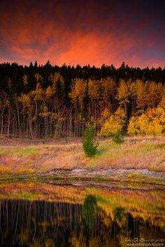 ~~Solitary Beauty ~ autumn sunrise, Gilpin County, Colorado by kkart~~