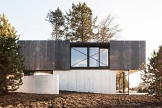 House in Riehen / Lukas Raeber