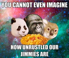 Our Jimmies