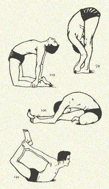 Fran's House of Ayurveda: Yoga Postures