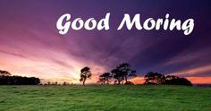 Beautiful morning copy