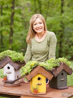 Home Tweet Home bird houses with sedums on roof, such a fun idea.