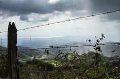 Standing on the mountain we could see the rain closing in on us. The area of Monteverde is stunning and the views on this road breathtaking. You can sea the Pacific Ocean at the back.  All photos by Harmen Piekema Photography (c)