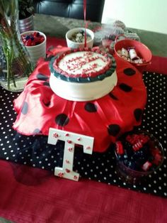 Lady Bug Birthday Party Ideas ... Child's lady bug costume used as cake stand cover for smash cake.