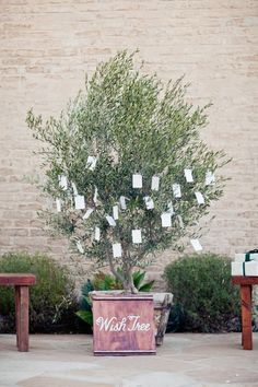 Wedding wishing tree...a dutch tradition for people to do during the reception.We can put additional cards and markers at each persons place
