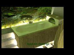 bathroom interior design, theme: rainforest