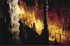 Hastings Cave, Tasmania (Australia)